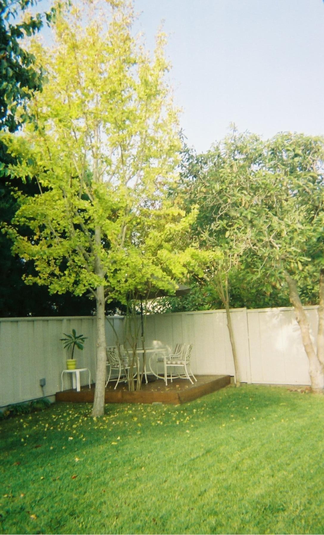 Terri's writing tree house